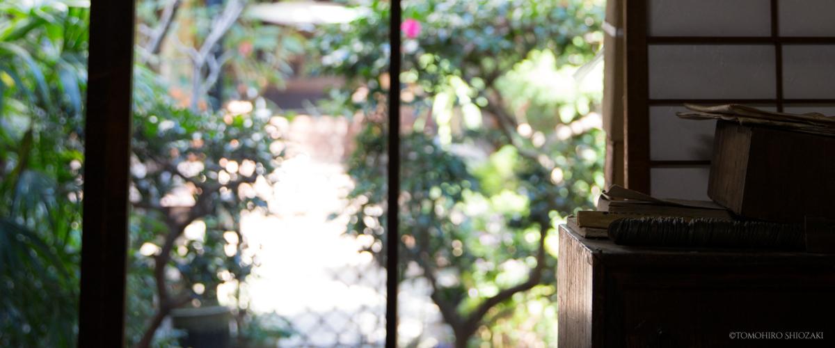 「京町家ひより」奥座敷から中庭